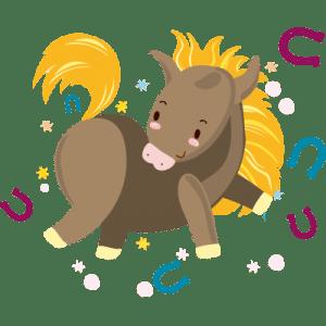 Paseos en Pony o Caballo