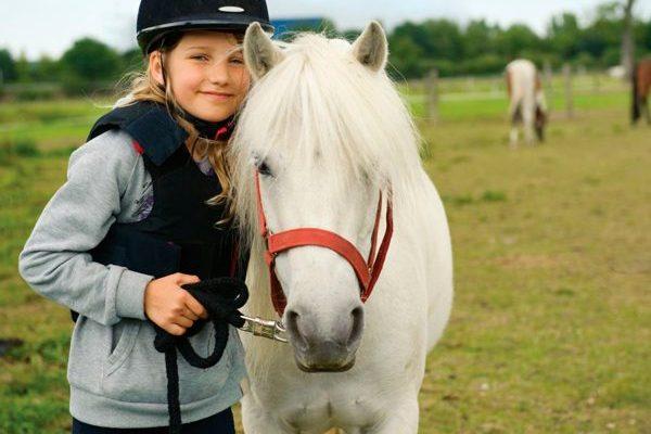 Campamentos de equitación en Coslada