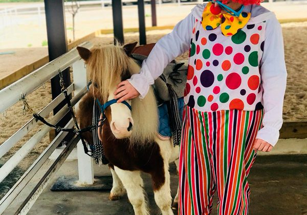 Campamentos de verano con caballos en Coslada