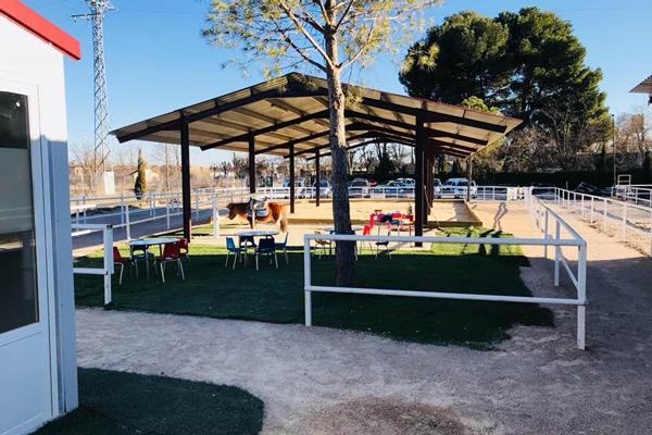 Cumpleaños con caballos en Alcalá de Henares
