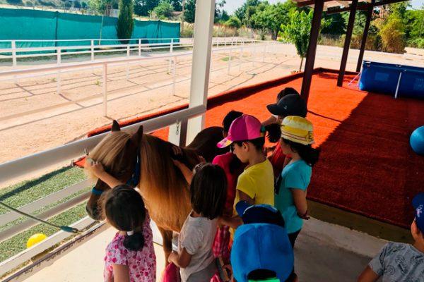 Cumpleaños con ponis en San Fernando de Henares