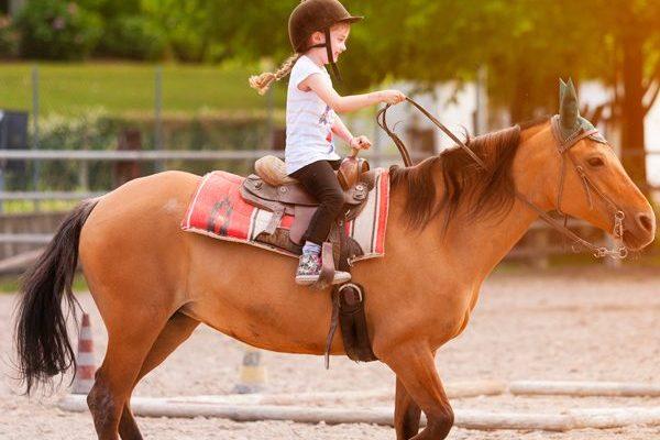 Paseos a caballo para niños en Alcalá de Henares