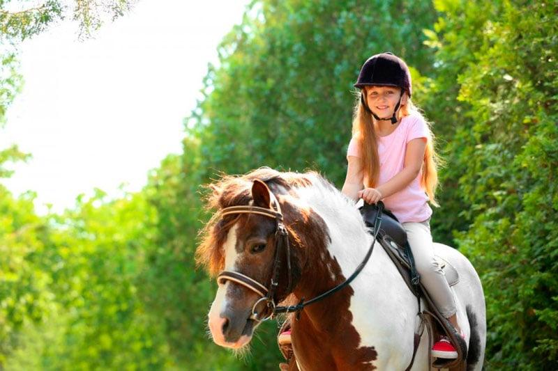 paseos en pony y caballo
