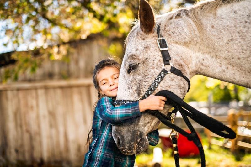 caballos ayudan a las personas con autismo
