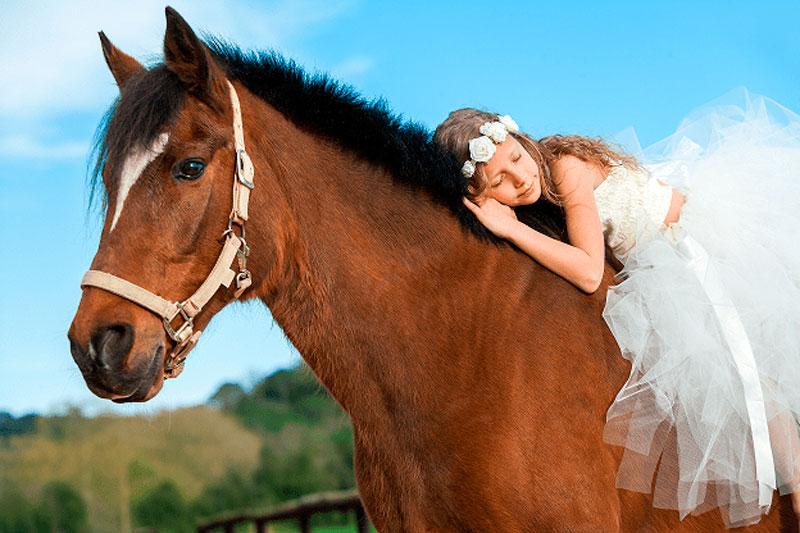 comunión con ponis